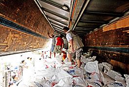 配布用の食料品はサンタ・ロサ市長から貸与されたトラックに積み込まれた。